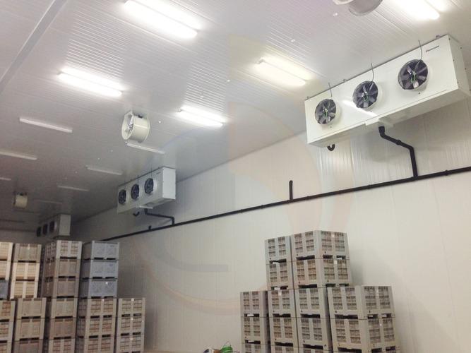 Ejemplo de instalación de cámaras frigoríficas por Bernad