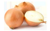 La conservación de las cebollas en cámaras refrigeradas