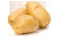 Camaras frigorificas para almacenamiento y conservación de patatas