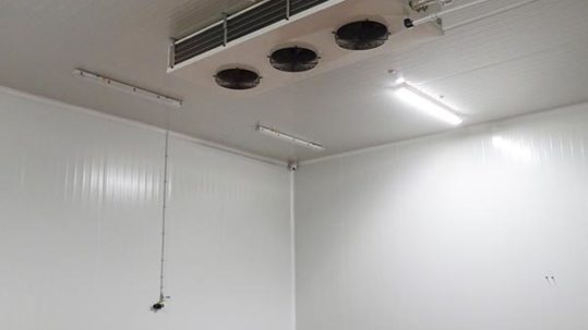 como limpiar una cámara frigorífica de manera correcta