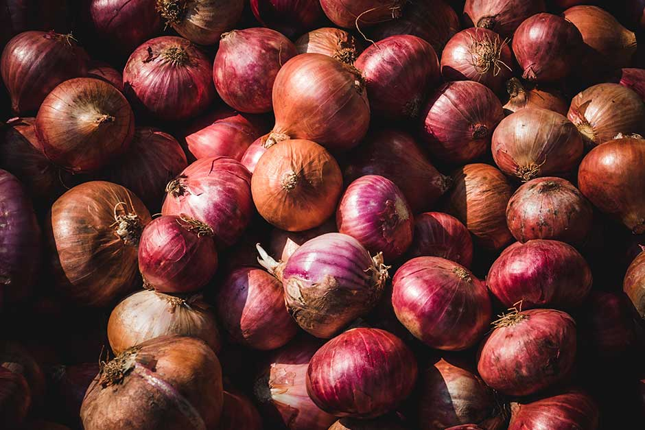 conservación y almacenamiento de cebollas